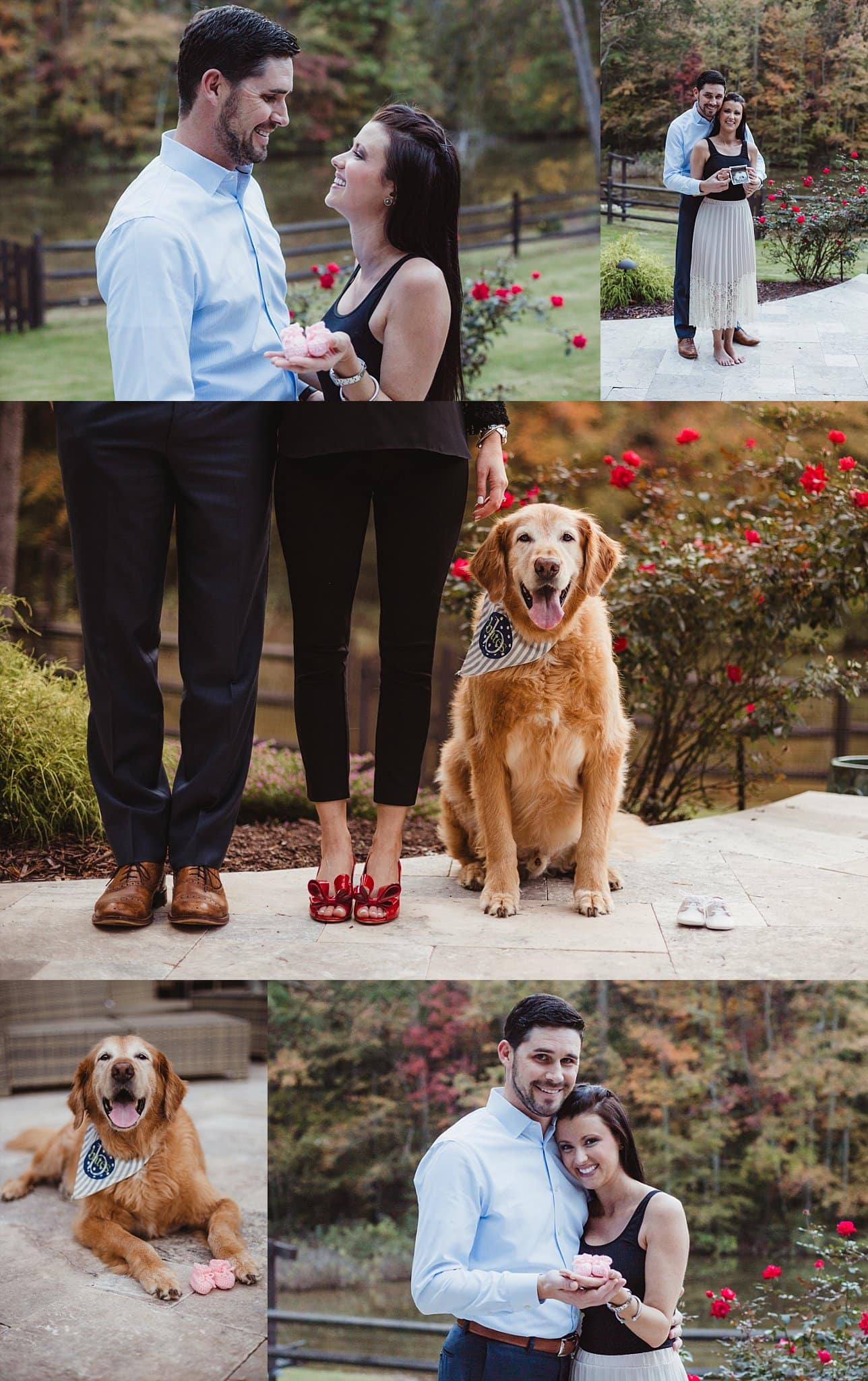 collage of pregnancy announcement photos