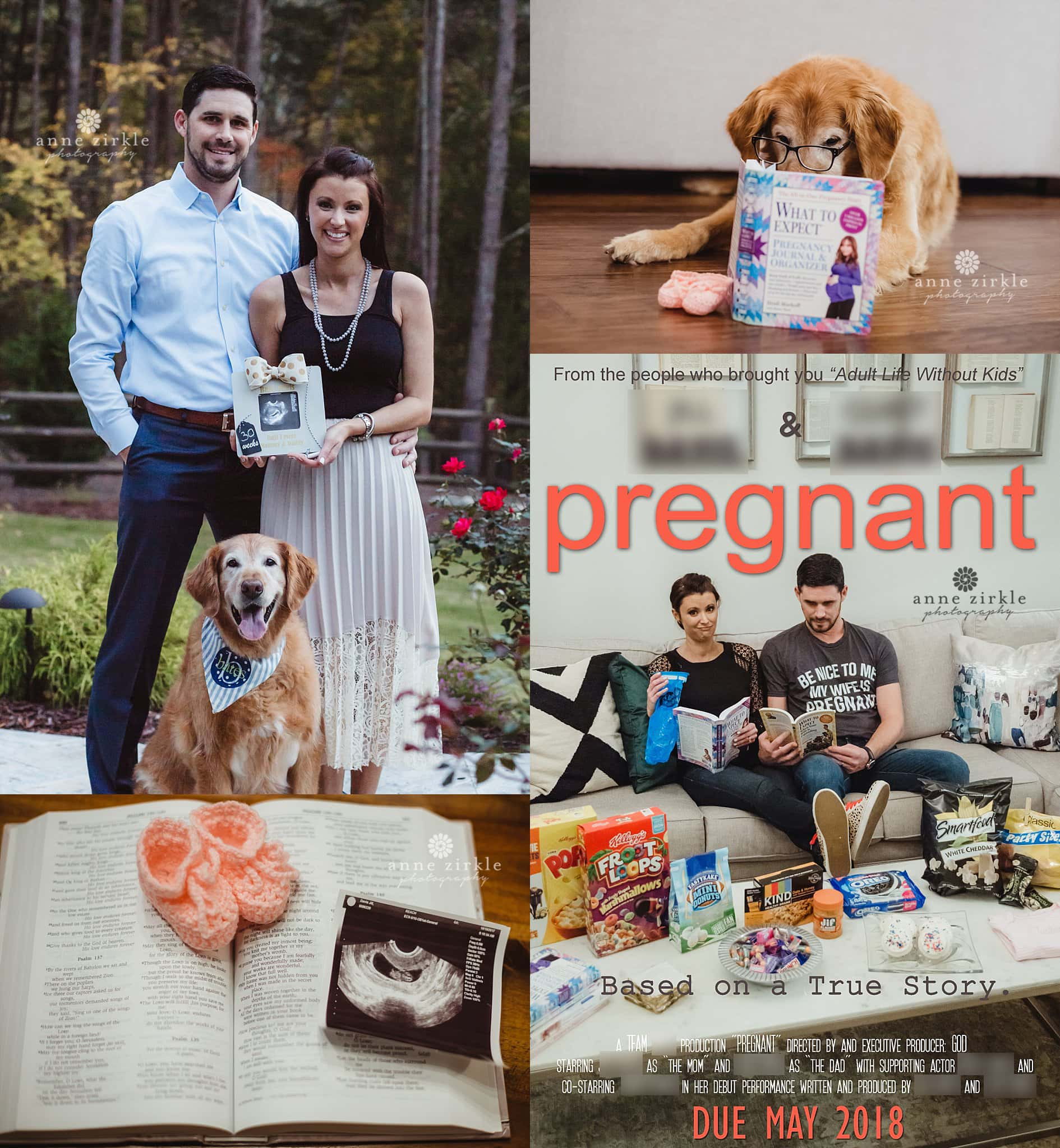 Collage of photos from a pregnancy announcement and gender reveal photo session