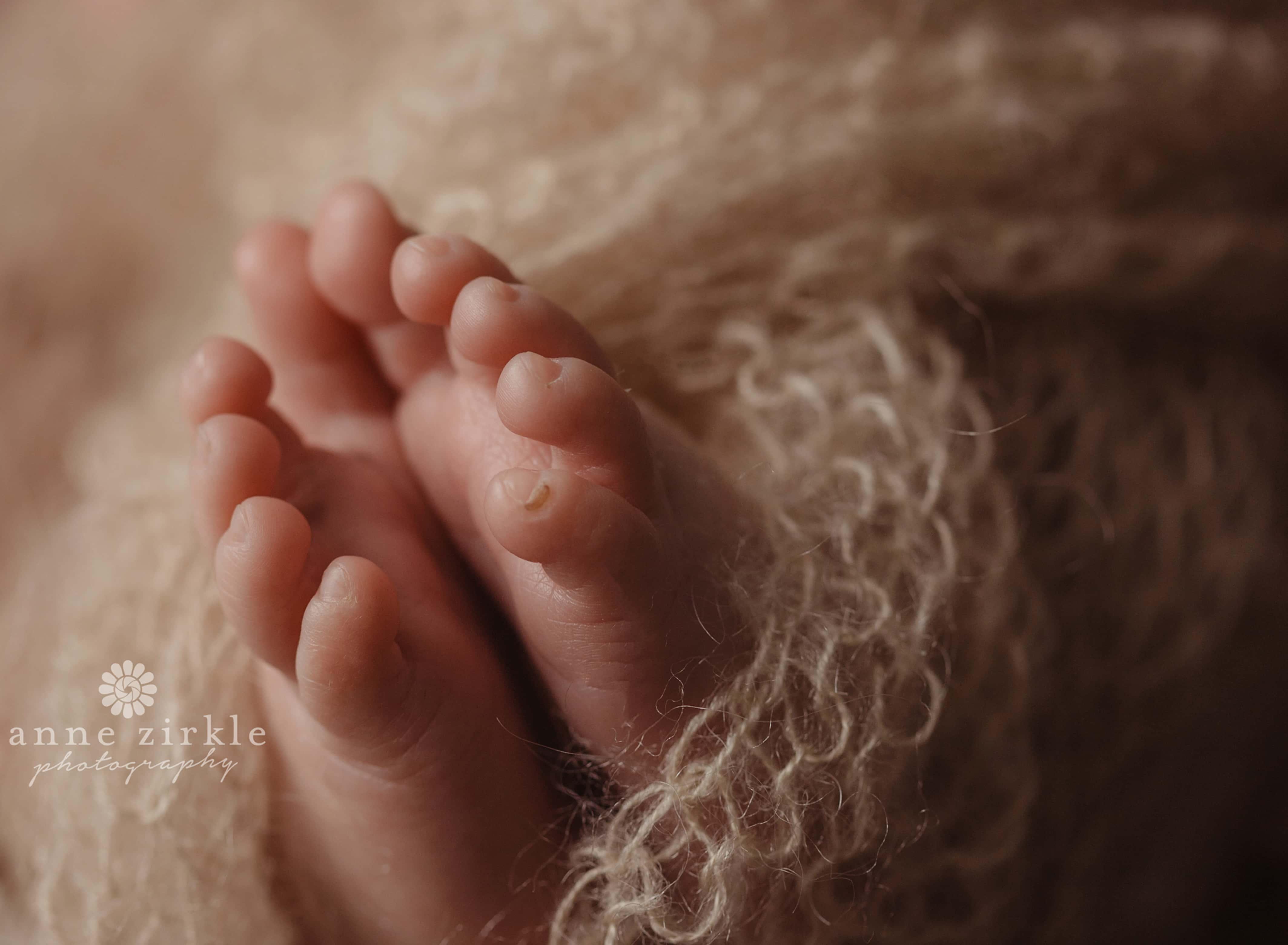 newborn toes macro Mooresville and Lake Norman newborn baby photographer